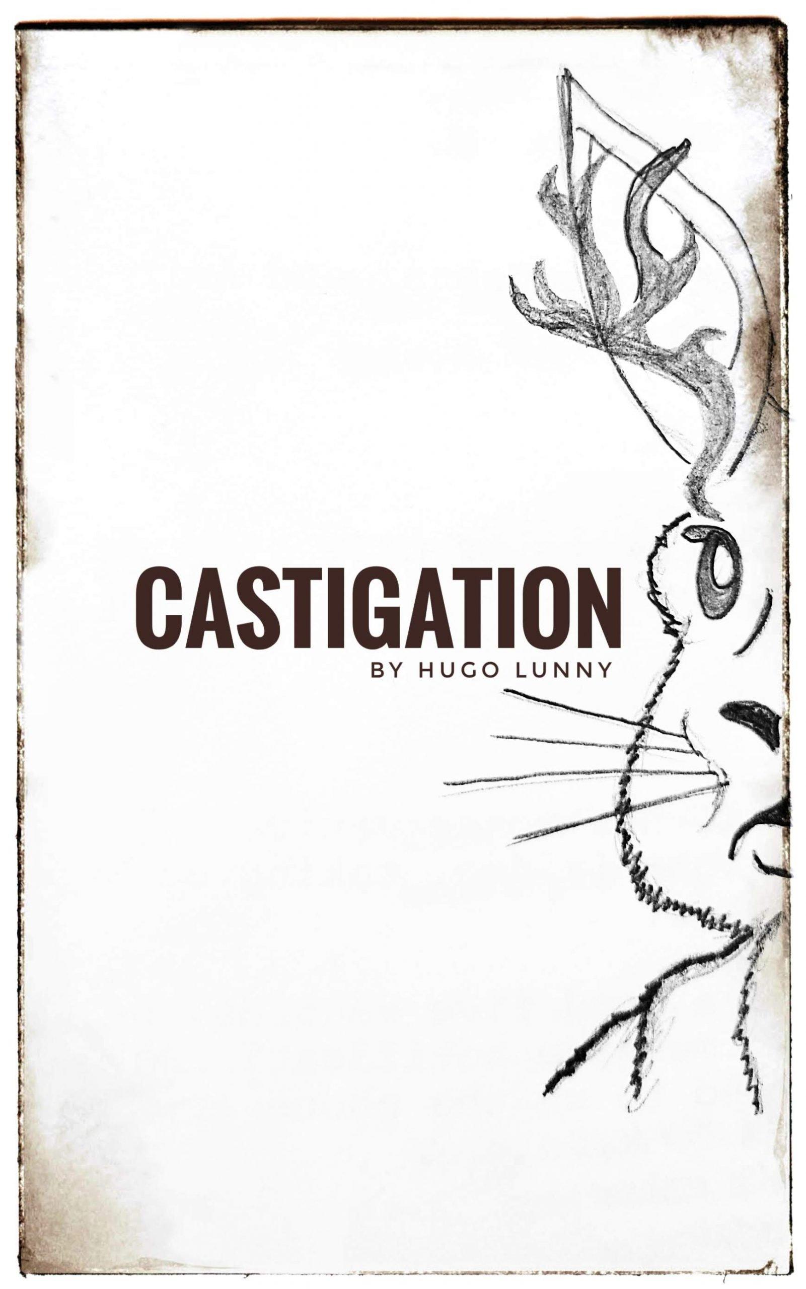 The Castigation movie